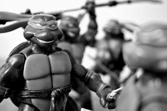 Turtle Toy Art