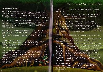 Zelda: Ocarina of Time Story Artwork