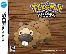 Pokemon Brown fake DS box