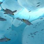 Endless Ocean 2 wallpaper Penguins