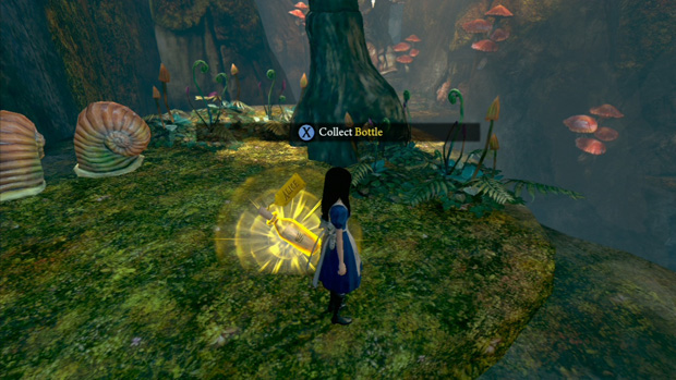 Collecting Bottles in Alice Madness Returns