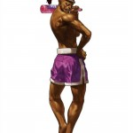 King of Fighters XIII Hwa Jai Character Artwork