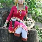 Zelda and Link Skyward Sword Costume
