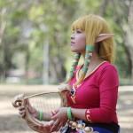 Zelda and Link Character Costume
