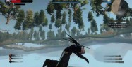 The Witcher 3 Glitches