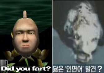 Real-life Seaman fish with human face created