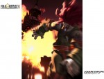 Amarant Final Fantasy IX wallpaper