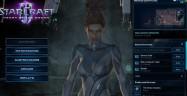 StarCraft 2: Heart of the Swarm Beta Download Screenshot