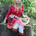 Zelda and Link Skyward Sword Costume