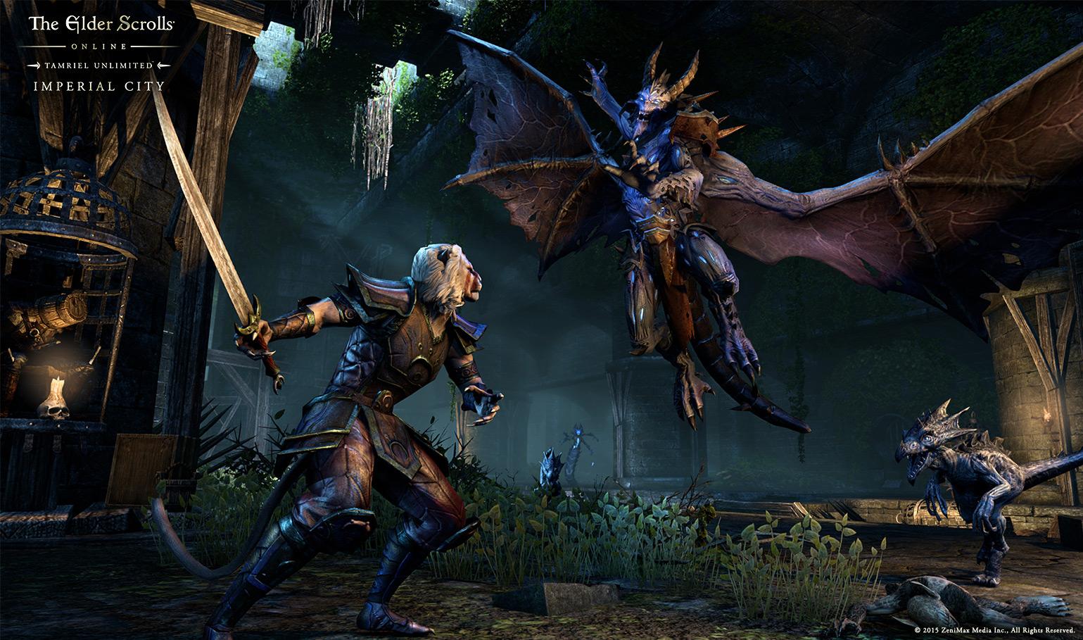 Elder Scrolls Online Tamriel Unlimited Screenshot Daedra Slayer
