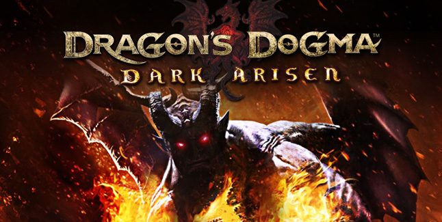 Dragon's Dogma: Dark Arisen Banner