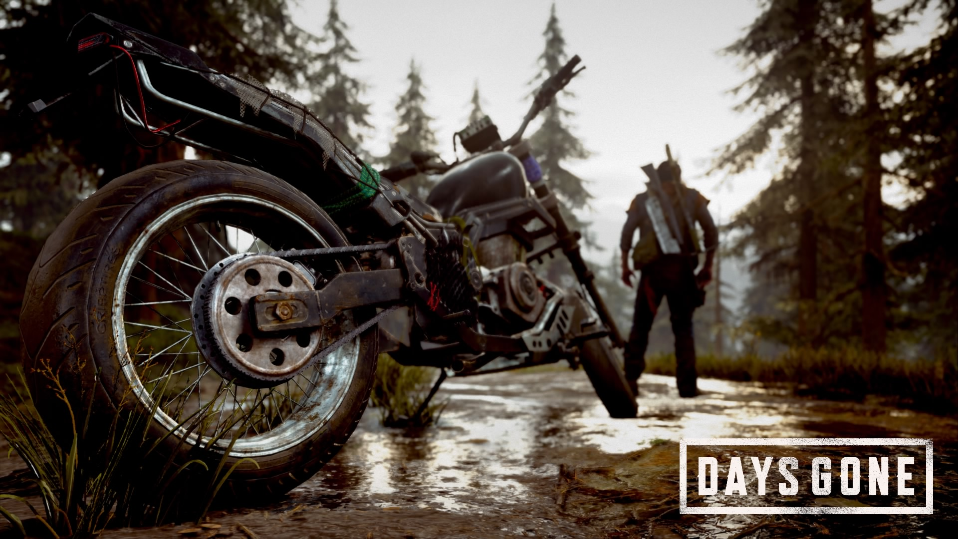 Days Gone Photo Mode Screen 1