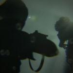 The Last of Us Part II Screen 2