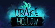 Drake Hollow Banner