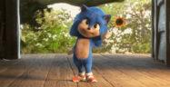 Baby Sonic Banner