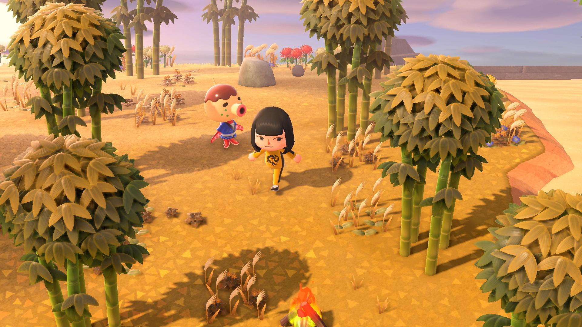 Animal Crossing New Horizons Screen 12