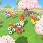 Animal Crossing New Horizons Screen 4