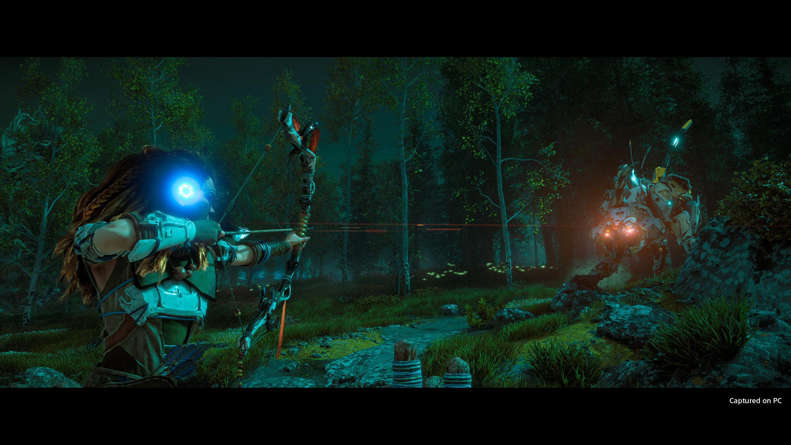 Horizon Zero Dawn PC Screen 1