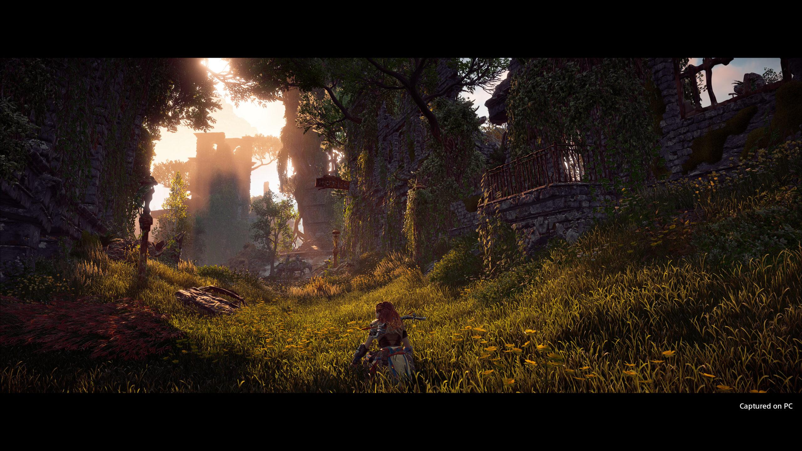 Horizon Zero Dawn PC Screen 2