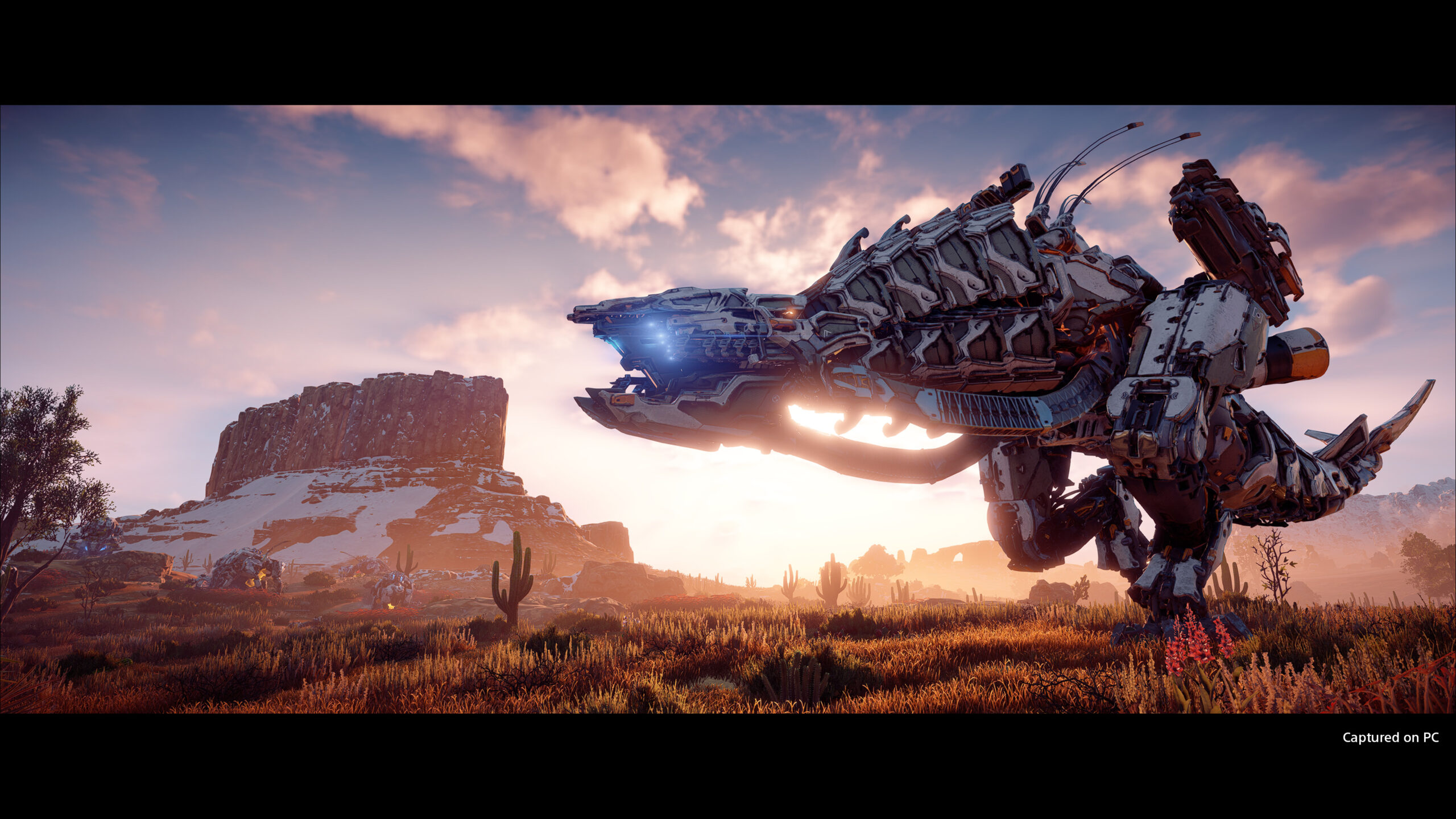 Horizon Zero Dawn PC Screen 4
