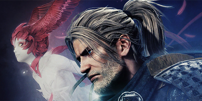 Nioh Collection Banner Small